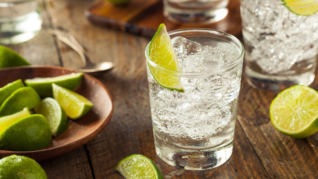 JUST ADD TONIC: THE BEST GINS UNDER $20